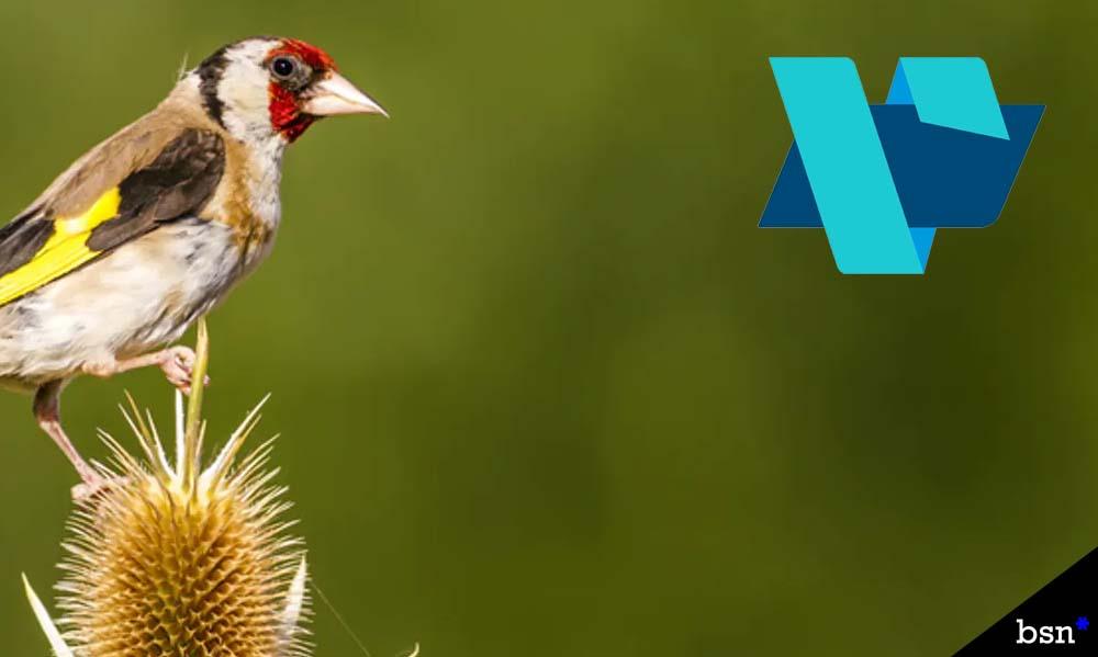 Goldfinch Vesta Acquisition
